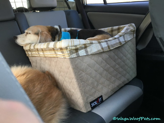 Safety Style Comfort - Solvit Pet Safety Seat Giveaway