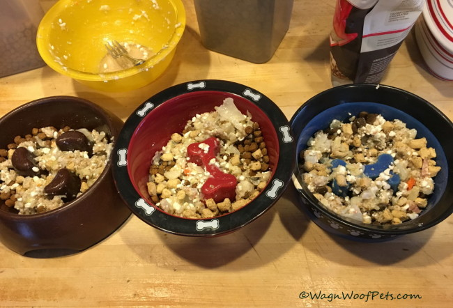 Fighting K9 Cancer - Healthy Meals