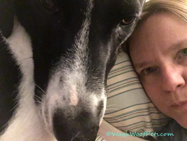 Sunday Selfie Snuggles!