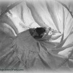Black & White Sunday - Hiding