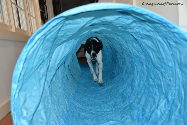 Luke Checks Out the New Tunnel