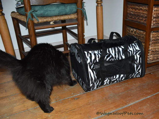 Samantha Gets a New Carrier