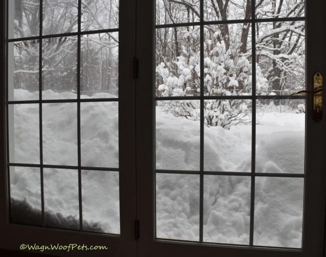 Weather Alert - Snowmageddon!