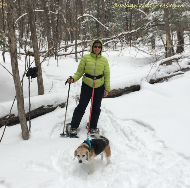 Fun on Snowshoes