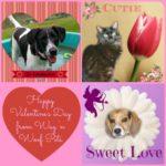 Valentine's Day Memory