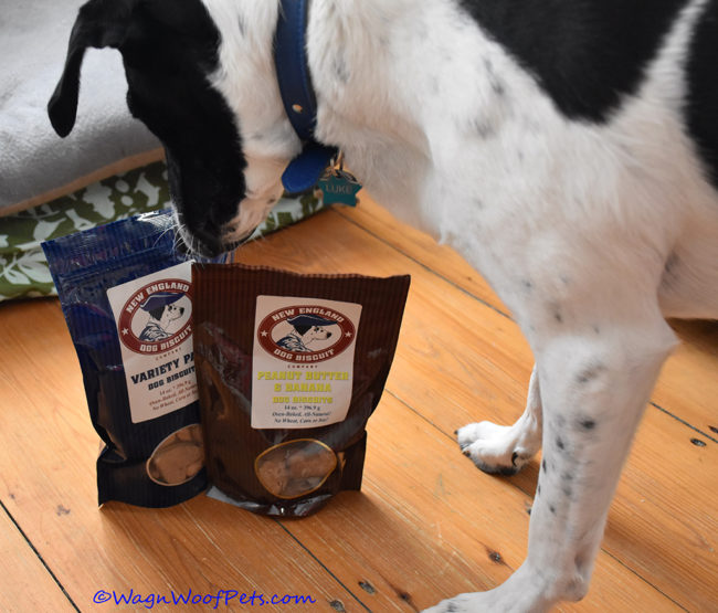 Our New England Dogs Love These Biscuits!