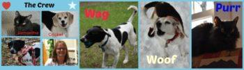 Wag 'n Woof Pets Crew