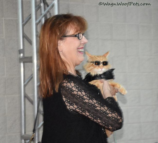 Samson, Rescue Cat #BlogPaws