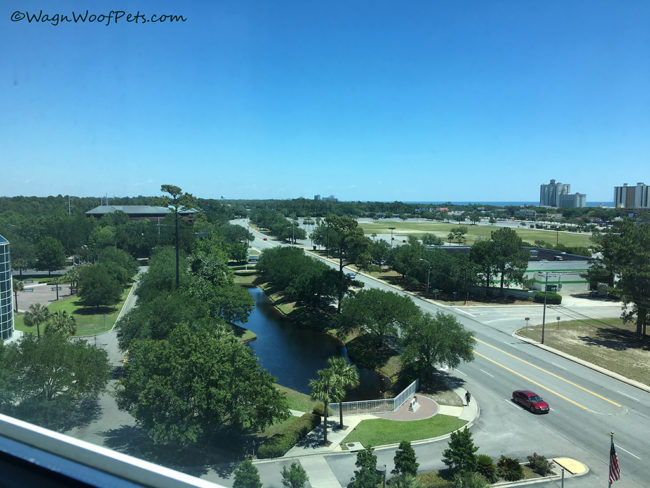Pre-BlogPlaws Conference Myrtle Beach