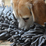 Paw5 Wooly™ Snuffle Mat Review (& Giveaway)