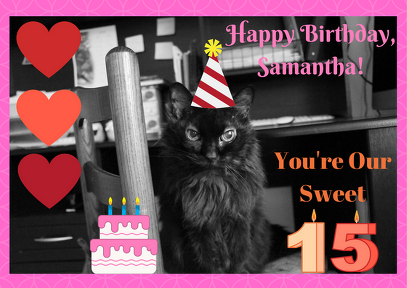 Samantha Turns 15 Today!