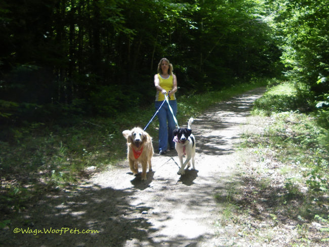 Unite to Fight Pet Cancer & Throwback Thursday