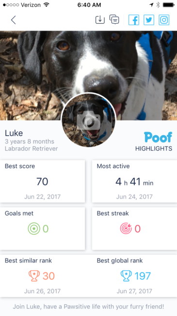 Poof Pet Activity Tracker - Highlights