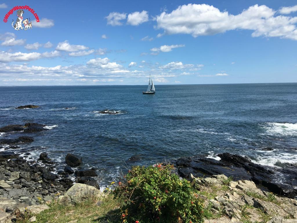 Marginal Way Coast Walk in Maine