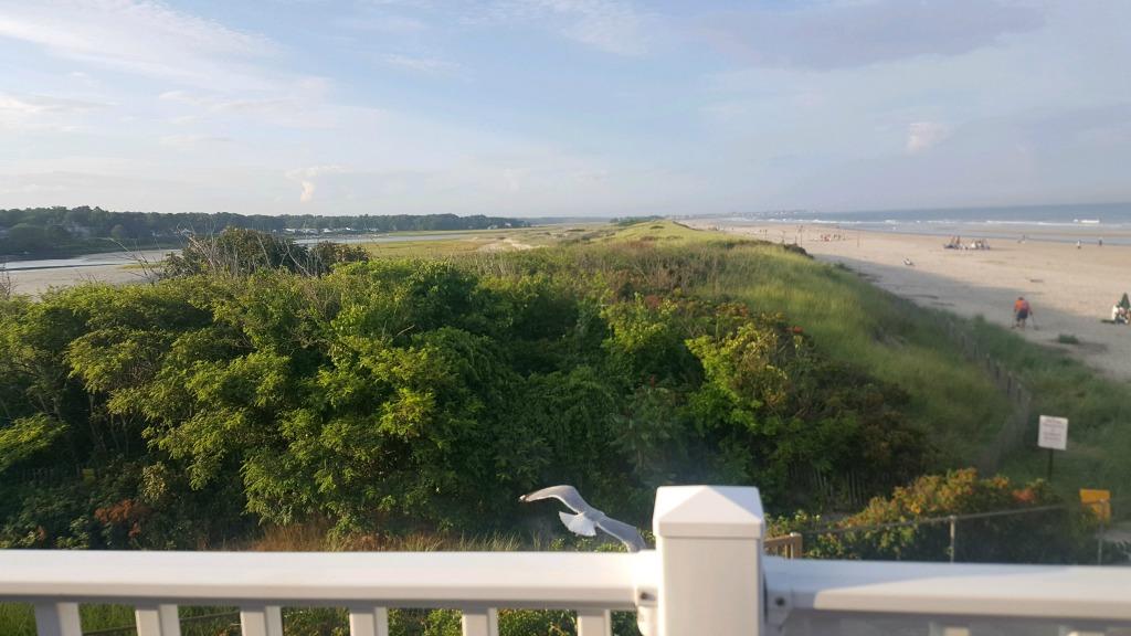 Seagull Retreats