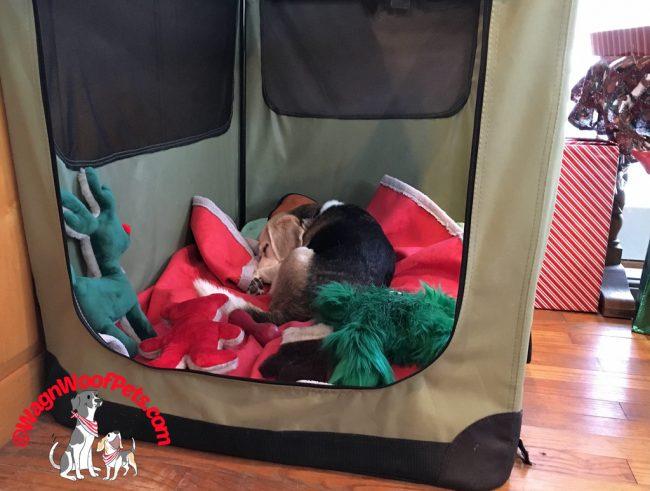 Festive Christmas Dog Crate