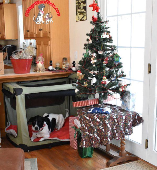 Festive Dog Crate