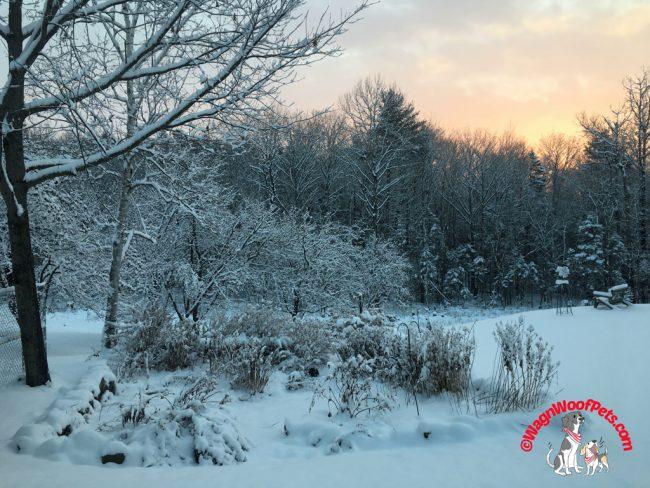 First Snow on the Farm