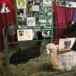 Fun at the NH Farm & Forest Expo