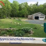 "#AppreciatetheMoments Photo Challenge – ""Summer"""
