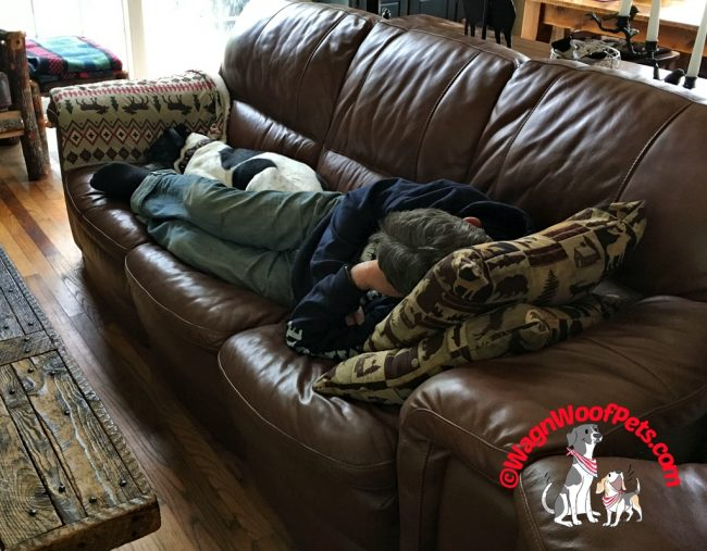Luke Napping with Dad #HempMyPet