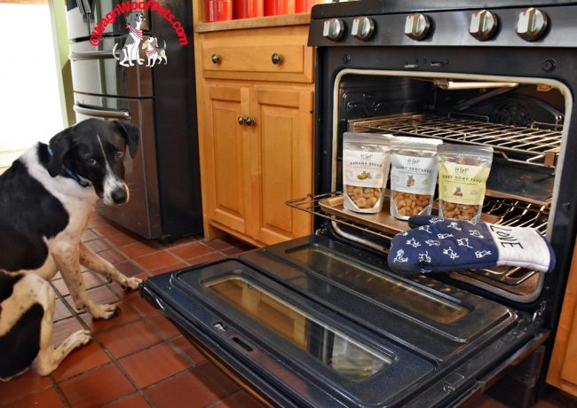 H&P Dog Treats Giveaway