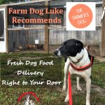 Farm Dog Luke Recommends The Farmer's Dog