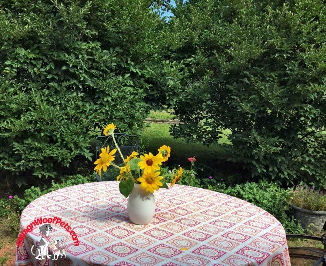Summer's Bounty - Sunflowers