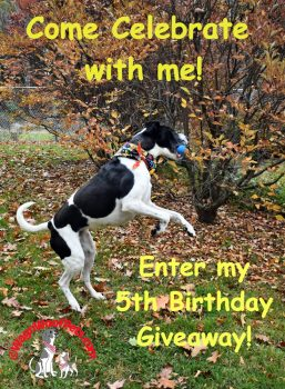 Celebrate my 5th Birthday with Me!