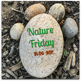 Nature Friday Blog Hop