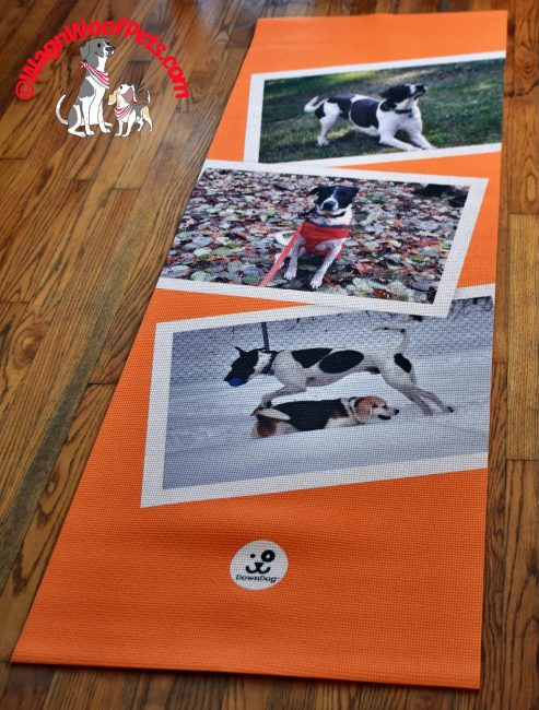 Gift Guide 2018 - DownDog Yoga Mats