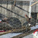 Unjust Incarceration on the Farm