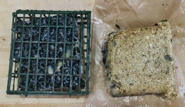 Homemade Suet Cakes for Farm or Wild Birds