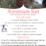 Homemade Suet for Chickens or Wild Birds