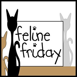 Feline Friday Blog Hop