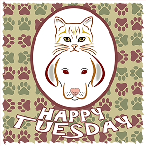 Happy Tuesday Blog Hop