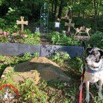 Our Pet Memorial Garden