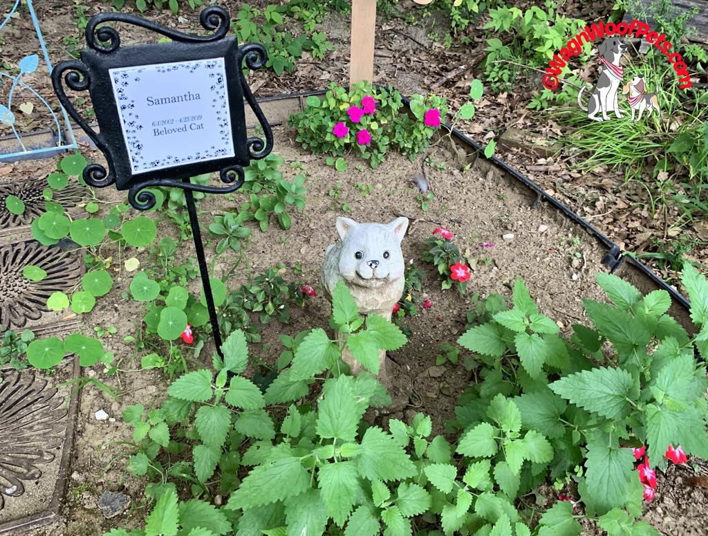 Cat Memorial Marker