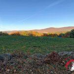 Nature & Farm Friday – Last of Autumn