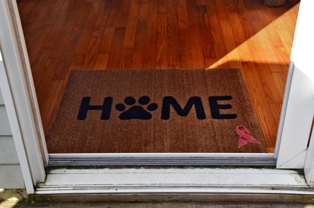 Welcome a Cure Pet-Centric Welcome Mat