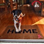 Pet-Friendly Welcome Mats for a Cause #welcomeacure2019 (Giveaway!)