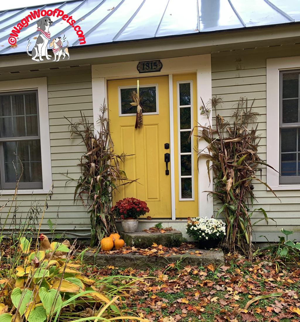 Our Autumn Homestead