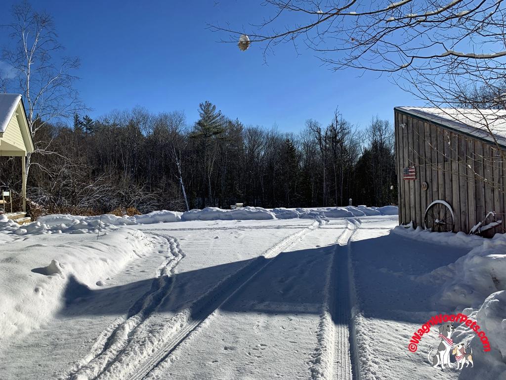 Let it Snow on the Farm