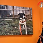 Turn Your Special Memories into Wall Art & More with PosterBurner