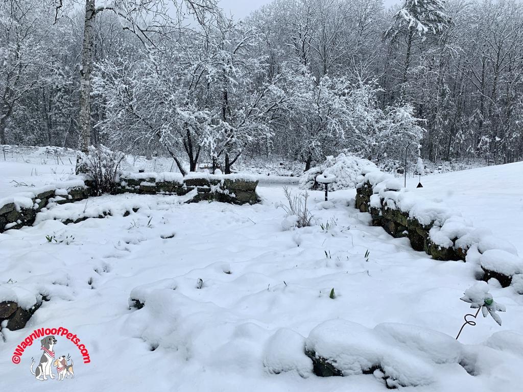 April Snow on the Farm
