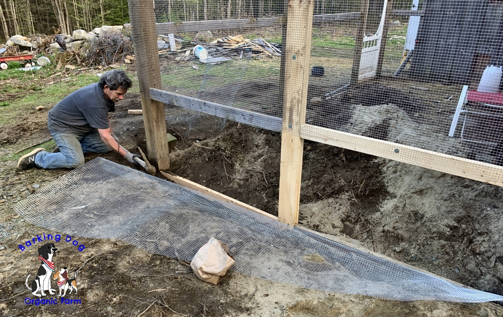 Upgrading the Chicken Coop