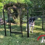 Yaheetech Dog Playpen Review