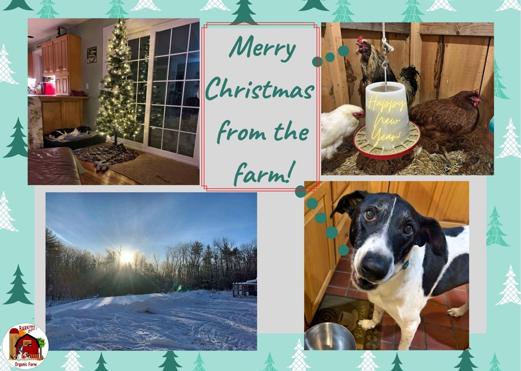 Merry Farm Christmas 2020